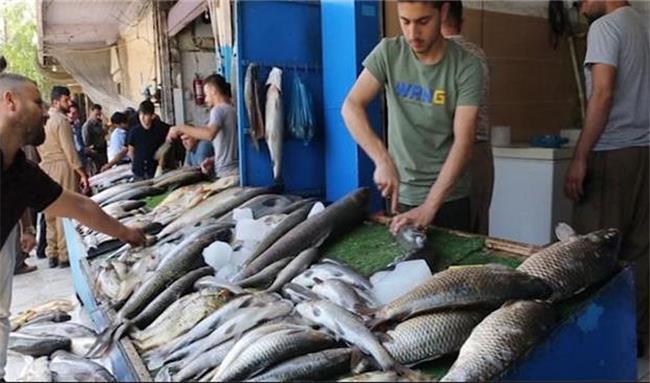 ماهی تولید داخلی اقلیم کردستان چند درصد نیاز بازار را تامین می کند؟