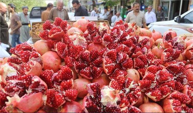 ممنوعیت واردات انار به کردستان عراق لغو شد + تصویر بخشنامه