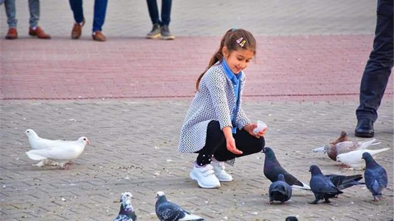 گزارش تصویری میدان نوروز استان دهوک