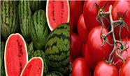 عراق  ۱۰۰ میلیون دلار گوجه و هندوانه از ایران خرید / صادرات فولاد به عراق در رتبه نخست