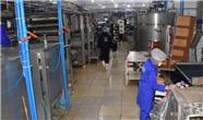 یک واحد تولیدی کیک و بیسکویت در اربیل ساخته می شود